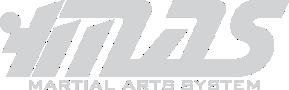MAS - Martial Arts System
